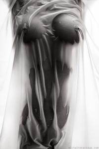 Art Nude Photography 02 (63)